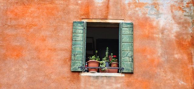 Světlo má pro rostliny dvojí význam